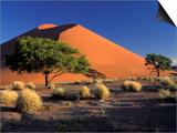 Sossosvlei Dunes, Namib-Naukluff Park, Namibia Prints by Art Wolfe