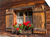 Traditional Window with Planter, Tyrol, Austria Láminas por Martin Zwick
