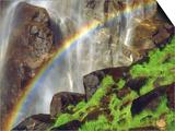 Rainbow at the Base of Bridal Veil Falls, Yosemite National Park, California, USA Posters by Christopher Talbot Frank
