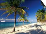 Tropical Beach on Isla de la Juventud, Cuba Prints by Gavriel Jecan