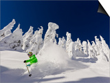 Skiing Untracked Powder on a Sunny Day at Whitefish Mountain Resort, Montana, Usa Poster di Chuck Haney