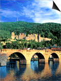 Heidelberg Castle, Heidelberg, Germany Prints by Miva Stock
