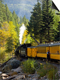 The Durango & Silverton Narrow Gauge Railroad, Colorado, USA Plakat af Cindy Miller Hopkins