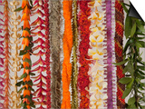 Hawaiian Flower Lei Strand Posters by Douglas Peebles