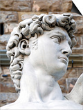 David of Michelangelo, Piazza Della Signoria, Florence, UNESCO World Heritage Site, Tuscany, Italy Prints by Nico Tondini