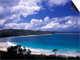 Soni Beach on Culebra Island, Puerto Rico Posters by Michele Molinari