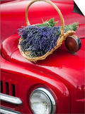 Lavender Bunches Rest on an Old Farm Pickup Truck, Washington, USA Prints by Brent Bergherm