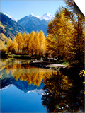 Fall Colors Reflected in Mountain Lake, Telluride, Colorado, USA Poster von Cindy Miller Hopkins