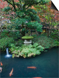Japanese Garden, Tokyo, Japan Posters by Rob Tilley