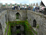 Waiting in Line To Kiss The Blarney Stone, Blarney Castle, Ireland Plakater af Cindy Miller Hopkins