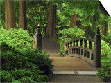 Moon Bridge after the Rain: Portland Japanese Garden, Portland, Oregon, USA Posters by Michel Hersen