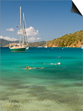 Snorkelers in Idyllic Cove, Norman Island, Bvi Art by Trish Drury