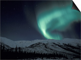 Northern Lights Curtain of Green and Yellow, Brooks Range, Alaska, USA Art by Hugh Rose