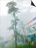Praying Flags in the Dochula Pass, Between Wangdi and Thimphu, Bhutan Prints by Keren Su