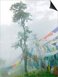 Praying Flags in the Dochula Pass, Between Wangdi and Thimphu, Bhutan Prints by Keren Su
