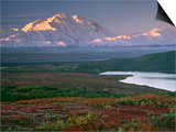 Charles Sleicher - Denali National Park near Wonder lake, Alaska, USA Obrazy