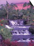 Tabacon Hot Springs, Arenal Volcano, Costa Rica Prints by Nik Wheeler