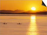 Kayaking at Sunset, San Juan Islands, Washington, USA Posters by Stuart Westmoreland