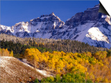 Fall Colors on Aspen Trees, Maroon Bells, Snowmass Wilderness, Colorado, USA Posters by Gavriel Jecan