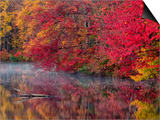 Hidden Lake, Pennsylvania, USA Prints by Jay O'brien