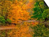 Dingmans Ferry, Pennsylvania, USA Print by Jay O'brien