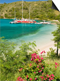 Snorkelers in Idyllic Pirates Bight Cove, Bight, British Virgin Islands Posters by Trish Drury