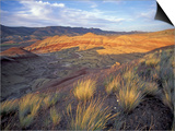 Painted Hills Unit, John Day Fossil Beds National Monument, Oregon, USA Print by Brent Bergherm
