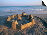 Sandcastle at Beach Poster by David Barnes