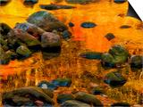 Pond, Davis, West Virginia, USA Art by Jay O'brien