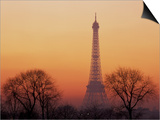 Eiffel Tower, Paris, France Posters by David Barnes