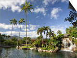 Charles Sleicher - Hanalei Bay Resort, Princeville, Kauai, Hawaii, USA Obrazy