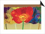 Poppy Tango Posters by Robert Mertens