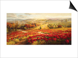 Red Poppy Panorama Art by Roberto Lombardi
