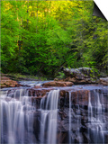 USA, West Virginia, Davis, Blackwater Falls. Scenic of the falls. Poster by Jay O'brien