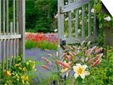 Garden Gate, Bainbridge Island, Washington, USA Posters by Don Paulson