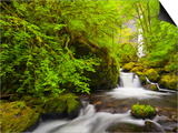 Lovely Elowah Falls on Mccord Creek in the Spring, in the Columbia Gorge, Oregon, USA Posters by Gary Luhm