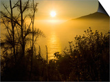 Sweet Fennel, Foeniculum Vulgare, and Sunset over Big Sur Coastline, California, Usa Print by Paul Colangelo