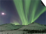 Northern Lights, White Mountain National Recreation Area, Alaska, USA Prints by Hugh Rose
