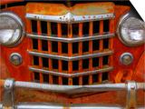 Rusty Trucks at Old Car City, Georgia, USA Art by Joanne Wells