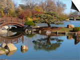 Hyde Park Neighborhood, Osaka Japanese Garden in Jackson Park, Chicago, Illinois, Usa Prints by Alan Klehr