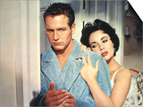 Cat On A Hot Tin Roof, Paul Newman, Elizabeth Taylor, 1958 Prints