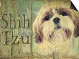 Shihtzu Prints by Wendy Presseisen