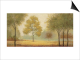 Tranquil Panorama Poster by Jill Schultz McGannon