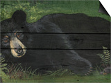 Lazy Bear Ranch Prints by Penny Wagner
