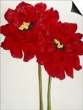 Red Splendor 2 Prints by Soraya Chemaly