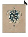 Vintage Linen Tortoise Prints by  Regina-Andrew Design