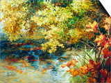Creek and Fall Trees Prints by Elizabeth Horning