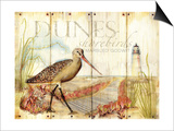 Dunes Shorebird Prints by Mary Escobedo
