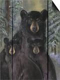 Alpine Bear Lodge Prints by Penny Wagner