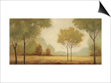 Serene Panorama Prints by Jill Schultz McGannon